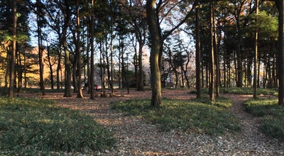 Photo of Park 鶴間公園 at 鶴間3-1-3, 町田市 194-0004, Japan