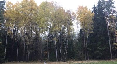 Photo of Trail Ensta Krog at Sweden