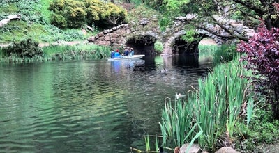 Photo of Lake Stow Lake at Stow Lake Dr, San Francisco, CA 94118, United States