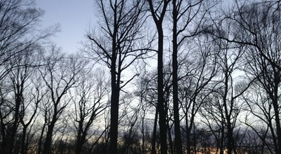 Photo of Park Saddle River County Park - Dunkerhook Area at Dunkerhook Road, Fair Lawn, NJ 07410, United States