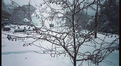 Photo of Park MacArthur Park at 1011 Vestal Ave, Binghamton, NY 13903, United States