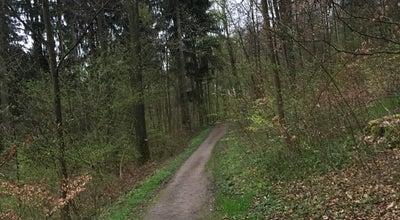 Photo of Trail Trail Käferberg at Switzerland