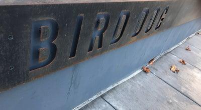 Photo of New American Restaurant Bird Dog at 420 Ramona St, Palo Alto, Ca 94301, United States