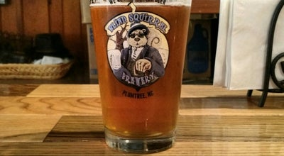 Photo of American Restaurant Blind Squirrel Brewery & Lodge at 4716 S Us Hwy 19e, Plumtree, NC 28664, United States