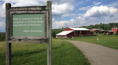 Photo of Farm Farm Sanctuary at 3150 Aikens Rd, Watkins Glen, NY 14891, United States