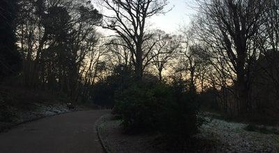 Photo of Park Bramall Hall Park at Bramhall Park Rd, Bramhall SK 7 3, United Kingdom