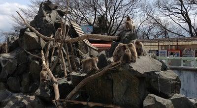 Photo of Zoo 長野市城山動物園 at 上松2-1-19, 長野市 380-0802, Japan