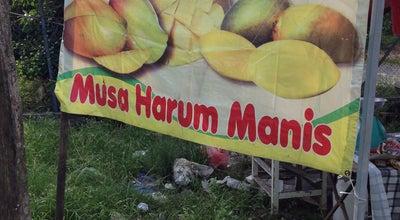 Photo of Food Truck Pasar Malam Santan at Jalan Santan, Kangar 01000, Malaysia