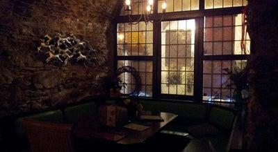 Photo of Bar Gecko at Germany