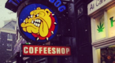 Photo of Smoke Shop The Bulldog Rockshop at Singel 12, Amsterdam 1013 GA, Netherlands