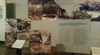 Photo of History Museum Museo Isla de Cozumel at Rafael Melgar, Cozumel, Mexico