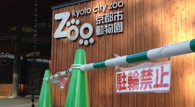 Photo of Zoo 京都市動物園 at 左京区岡崎法勝寺町, 京都市 606-8333, Japan