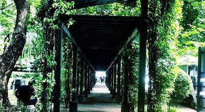 Photo of Park Jaime C. Velasquez Park at Jaime C Velasquez St, Salcedo Village, Makati City 1227, Philippines