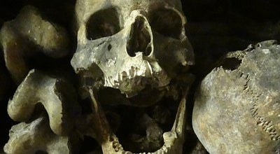 Photo of Historic Site Catacombes de Paris at 1 Avenue Du Colonel Henri Rol-tanguy, Paris 75014, France