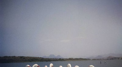 Photo of Lake Barra da Lagoa de Imboassica at Brazil
