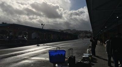 Photo of Flea Market Alemany Flea Market at 100 Alemany Blvd, San Francisco, CA 94110, United States