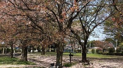 Photo of Park 大堀川防災レクリエーション公園 at 篠籠田, 柏市, Japan