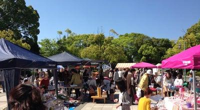 Photo of Park 富士市中央公園 at 永田町2-112, 富士市, Japan