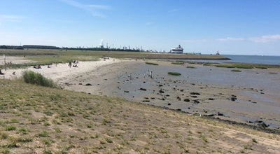 Photo of Beach strand Terneuzen at Netherlands