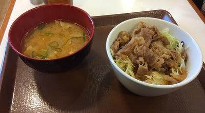 Photo of Diner すき家 55号徳島沖浜店 at 山城西4-1, 徳島市 770-8054, Japan