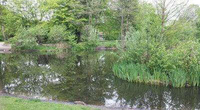 Photo of Lake Waller See at Waller Heerstr., Bremen 28219, Germany