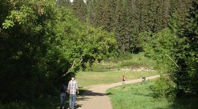 Photo of Trail Mill Creek Ravine at Canada