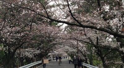 Photo of Park 夙川公園オアシスロード at 霞町, 西宮市, Japan