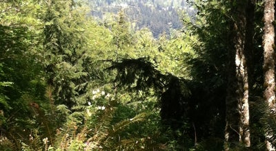 Photo of Trail North Chuckanut Mountain Trailhead at Bellingham, WA, United States