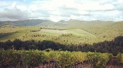 Photo of Winery Castello di Meleto at Località Meleto, Gaiole in Chianti (Siena) 53013, Italy