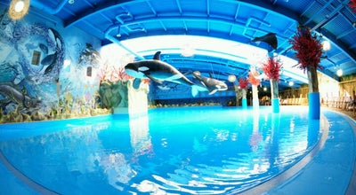 Photo of Water Park Аквапарк «Dream Island» at Трц «dream Town» (комплекс 2), Київ, Ukraine