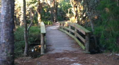 Photo of Trail Hammock Park at 1900 San Mateo Drive, Dunedin, FL 34698, United States
