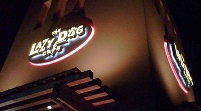 Photo of American Restaurant Lazy Dog Restaurant & Bar at 13290 Jamboree Rd, Irvine, CA 92602, United States