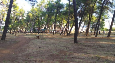 Photo of Park Tološka šuma at Tološka Šuma, Podgorica 81000, Montenegro