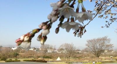 Photo of Park 多摩川中央公園 at 北田園1地先, 福生市 197-0005, Japan