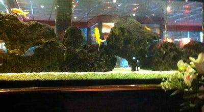 Photo of Chinese Restaurant De Chinese Muur at Kanaalstraat, Zelzate 9060, Belgium