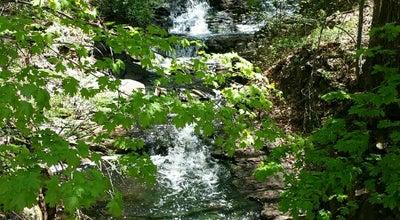 Photo of Trail Lyndhurst River Walk at Tarrytown, NY 10591, United States