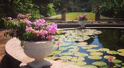 Photo of Botanical Garden Hope Botanical Gardens at Old Hope Rd., Kingston, Jamaica