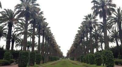 Photo of Park Parc de La Ligue Arabe at Bd Moulay Youssef, Casablanca, Morocco