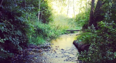 Photo of Trail Des Moines Creek Trail at SeaTac, WA 98188, United States