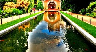 Photo of Botanical Garden Ботанический сад МГУ «Аптекарский огород» at Просп. Мира, 26, Стр. 1, Москва 129090, Russia