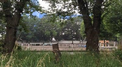 Photo of Park 水元中央公園 at 水元, 葛飾区, Japan