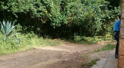 Photo of Trail Ololuwa at Kenya