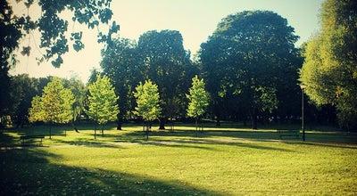 Photo of Park Park Marcinkowskiego at Park Marcinkowskiego, Poznań, Poland