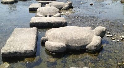 Photo of River 鴨川デルタの亀石 (Turtle Stone - Kamo-gawa Delta Area) at 上京区梶井町447−5, 京都市, Japan