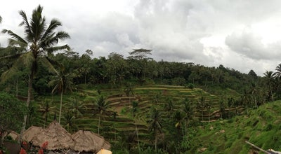 Photo of Field Tegal Alang Ubud at Ubud, Tegallalang, Indonesia