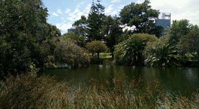Photo of Lake John Oldham Park at Mounts Bay Rd, Perth, We 6000, Australia