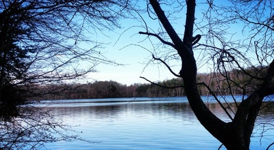 Photo of Lake Lake Townsend at Lake Townsend, NC, United States