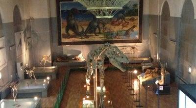 Photo of History Museum National Museum of Mongolia (Монголын Үндэсний Музей) at Монголын Үндэсний Музей, Ulaanbaatar 15160, Mongolia