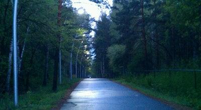 Photo of Trail Обкомовская дорога at Челябинский Городской Бор, Chelyabinsk, Russia
