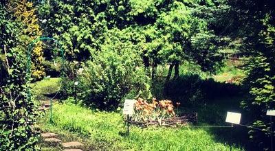 Photo of Botanical Garden Ботанический сад ТвГУ at Пер. Шевченко, 16, Tver 170000, Russia